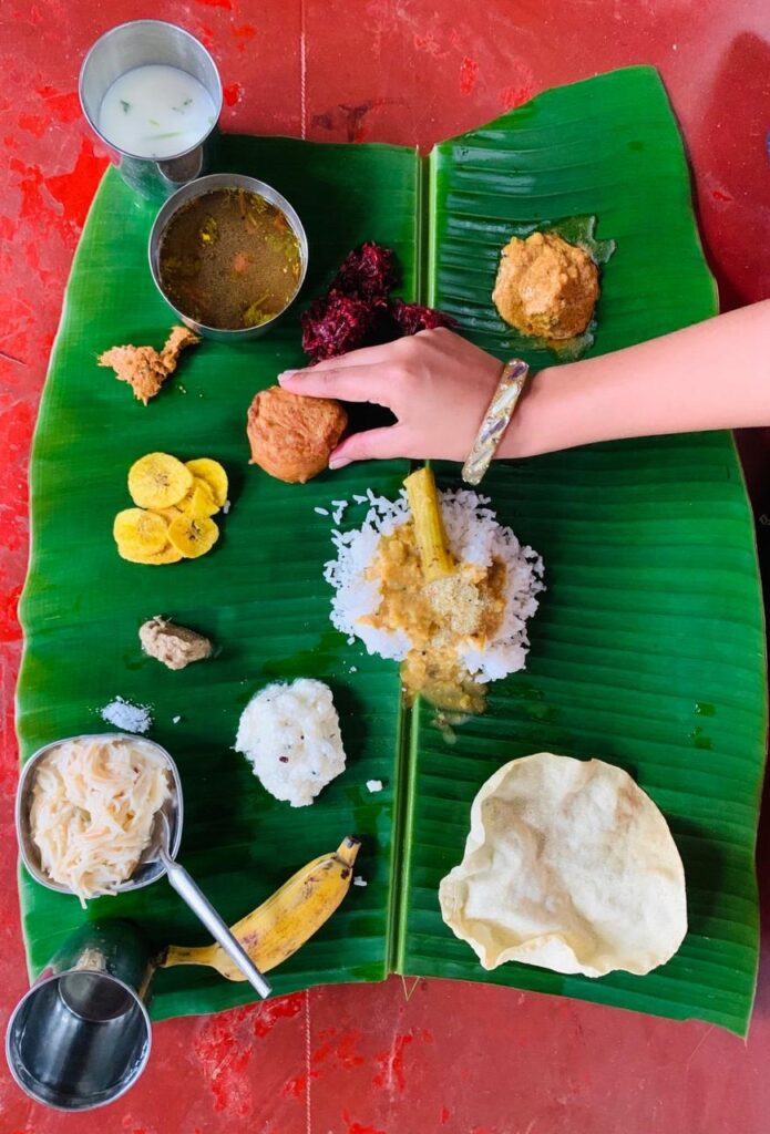 full course south indian meal in goa-1